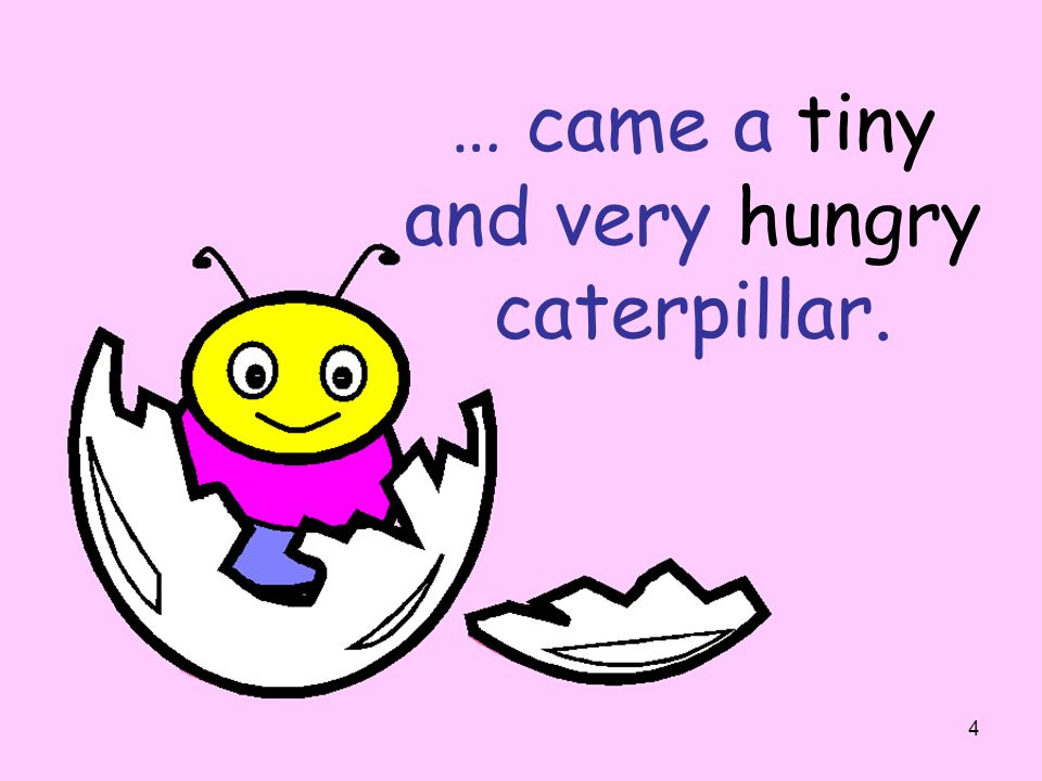 … came a tiny and very hungry caterpillar.
