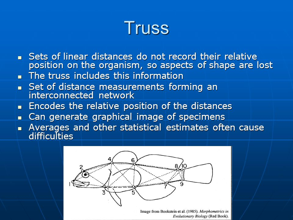 Truss Sets of linear distances do not record their relative position on the organism, so aspects of shape are lost.