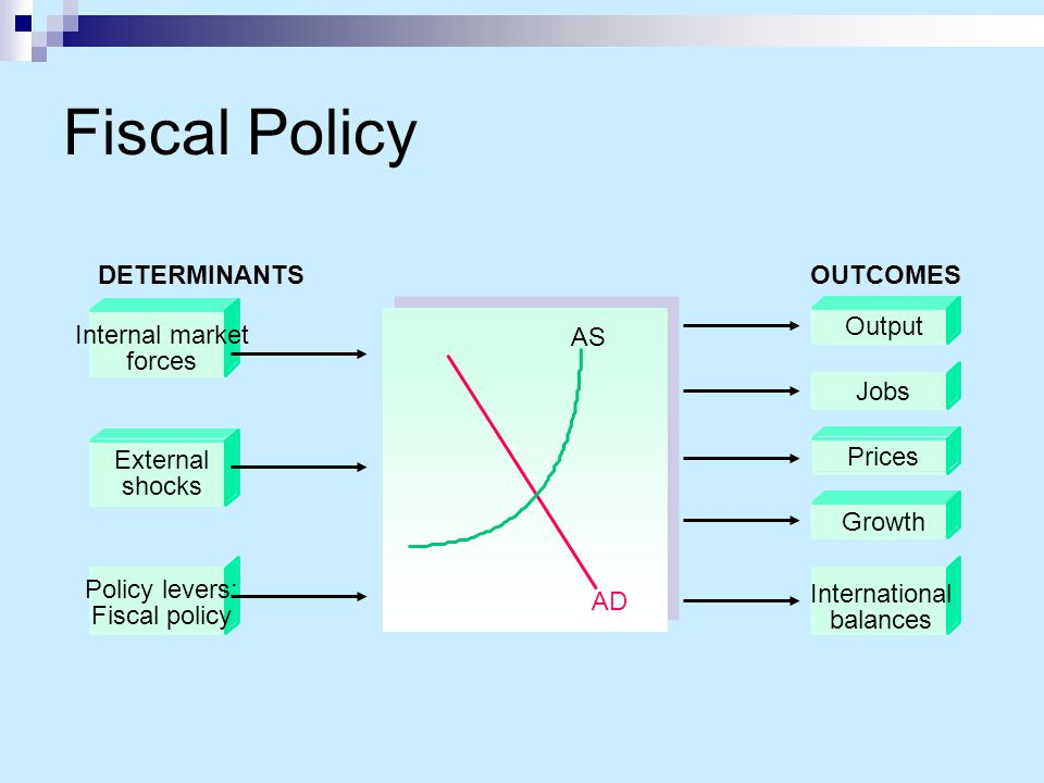 Fiscal Policy Internal market forces External shocks
