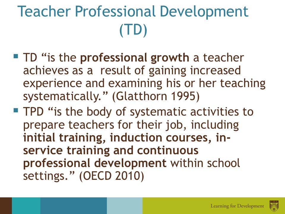 Teacher Professional Development (TD)