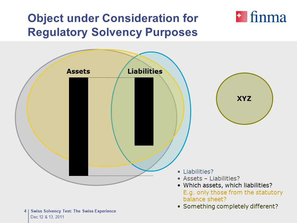 Object under Consideration for Regulatory Solvency Purposes