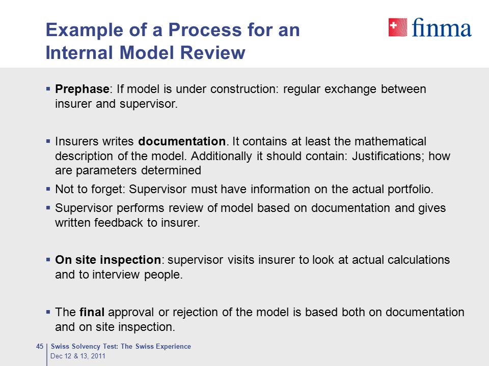 Example of a Process for an Internal Model Review