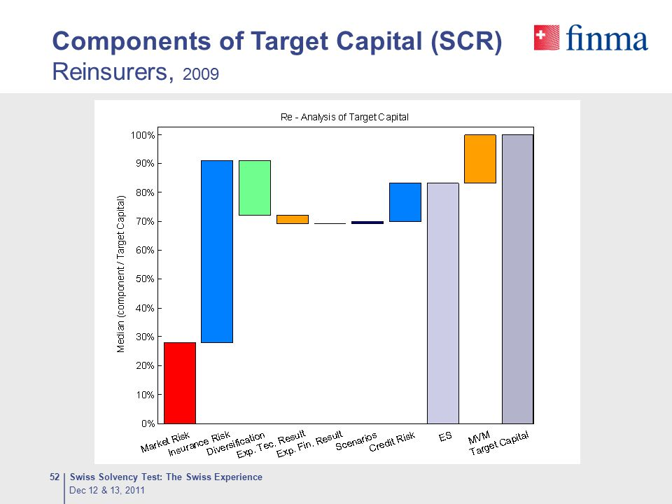Components of Target Capital (SCR) Reinsurers, 2009