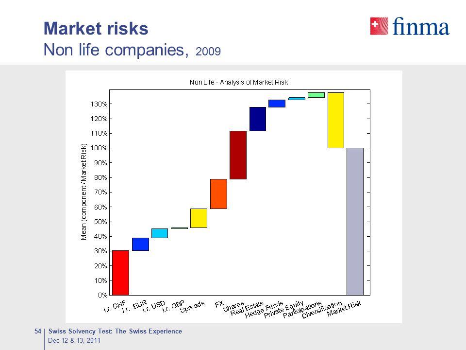 Market risks Non life companies, 2009