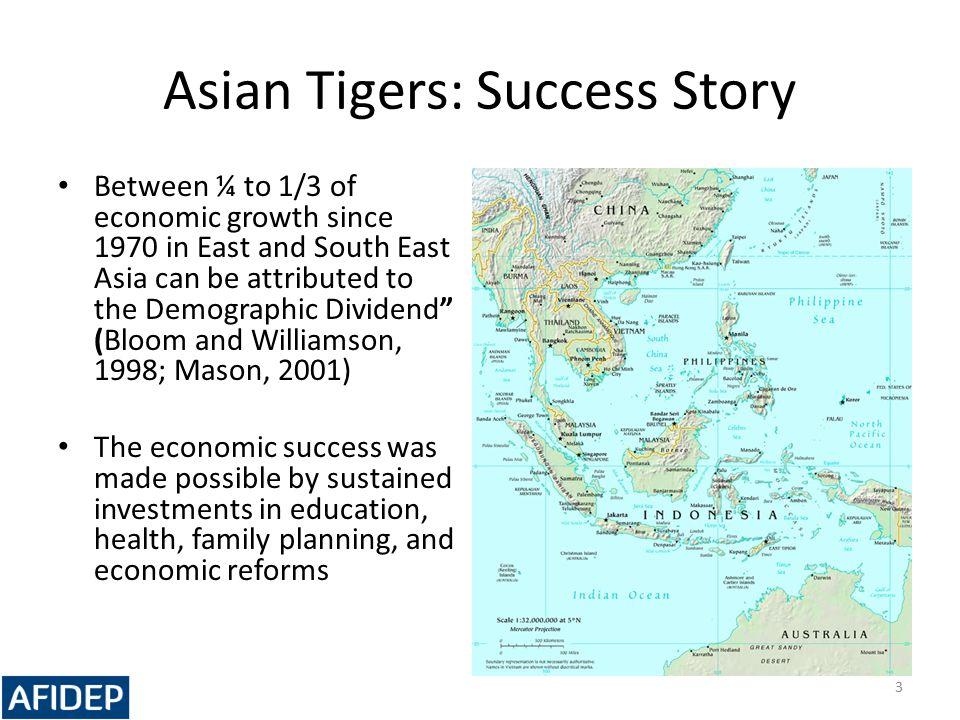 Asian Tigers: Success Story