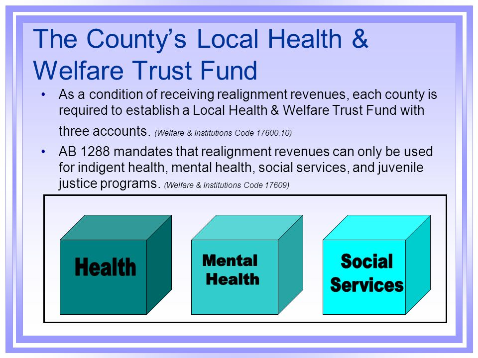 The County's Local Health & Welfare Trust Fund