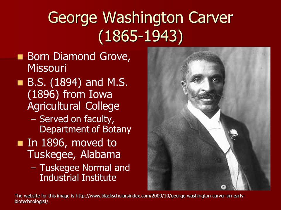 George Washington Carver (1865-1943)