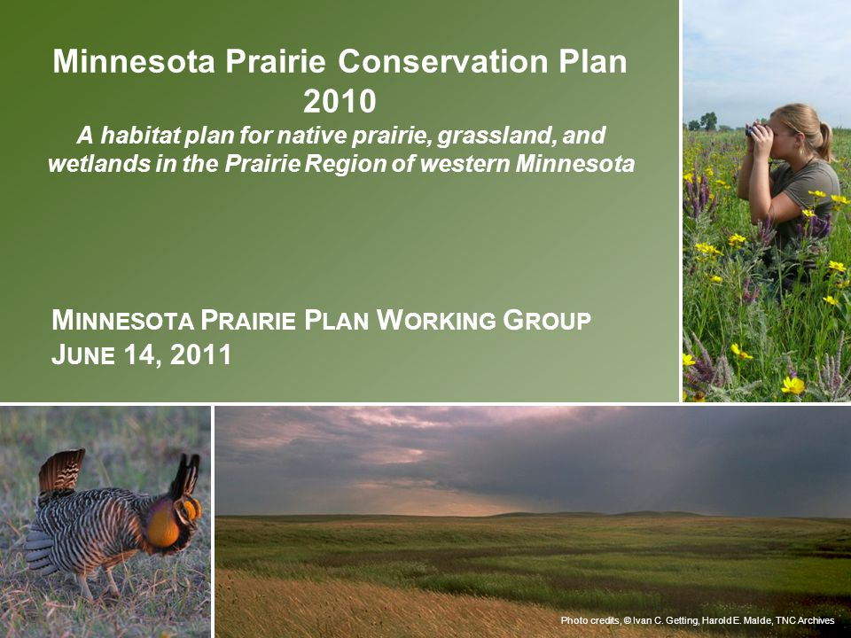 Minnesota Prairie Plan Working Group June 14, 2011