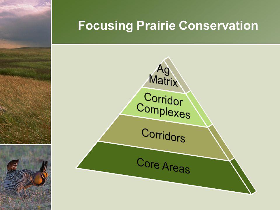 Focusing Prairie Conservation