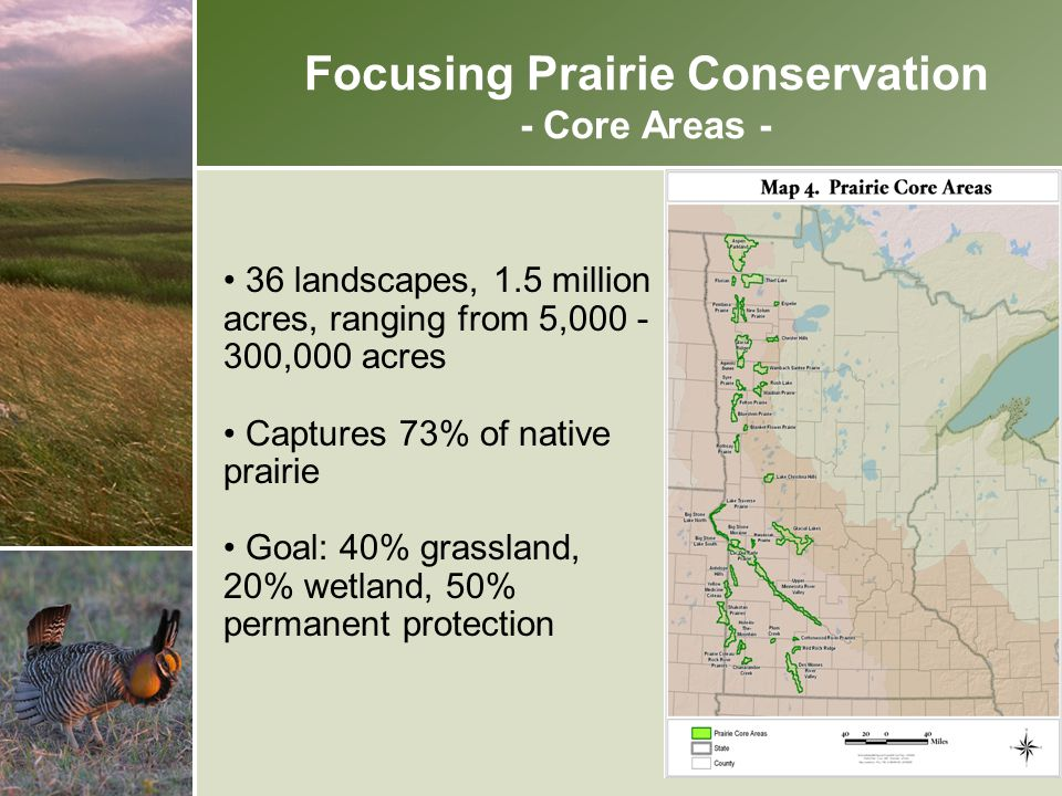Focusing Prairie Conservation - Core Areas -