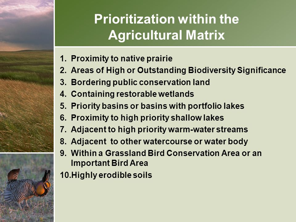 Prioritization within the Agricultural Matrix