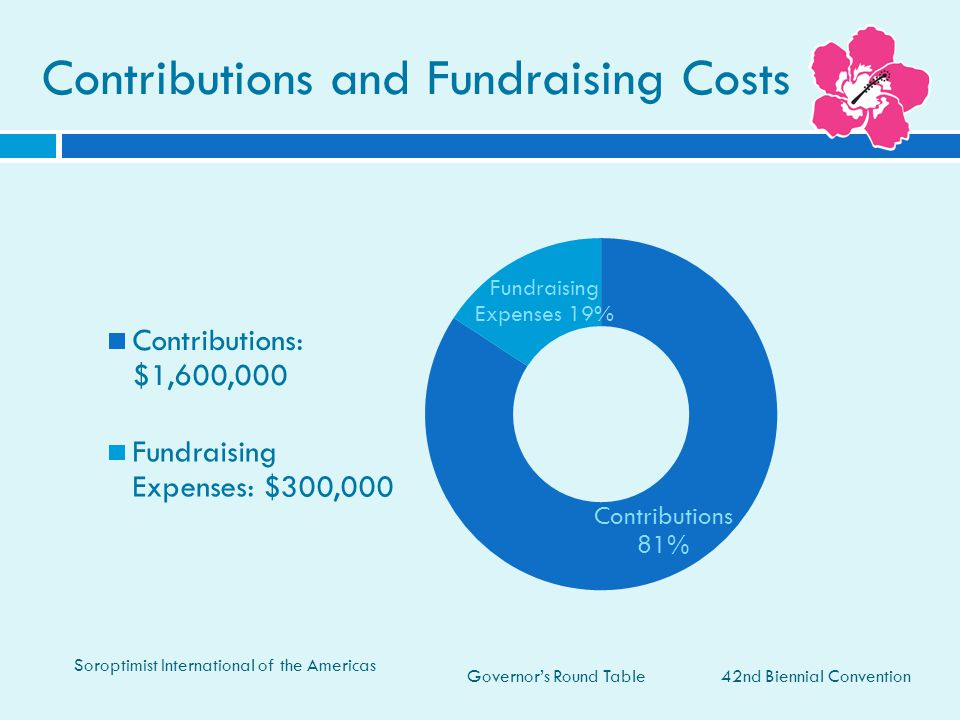 Contributions and Fundraising Costs