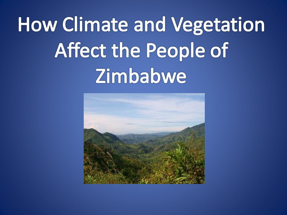How Climate and Vegetation Affect the People of Zimbabwe