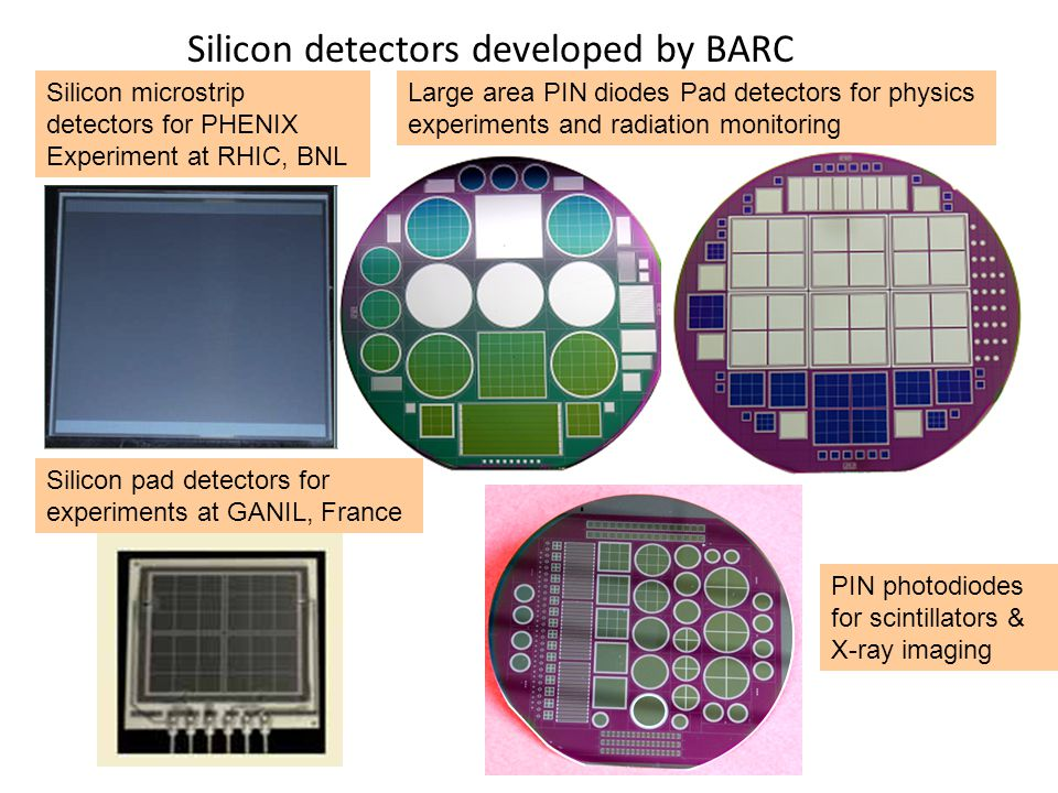 Silicon detectors developed by BARC