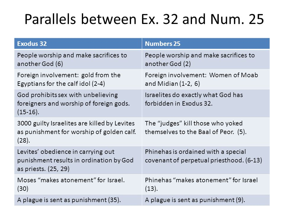 Parallels between Ex. 32 and Num. 25