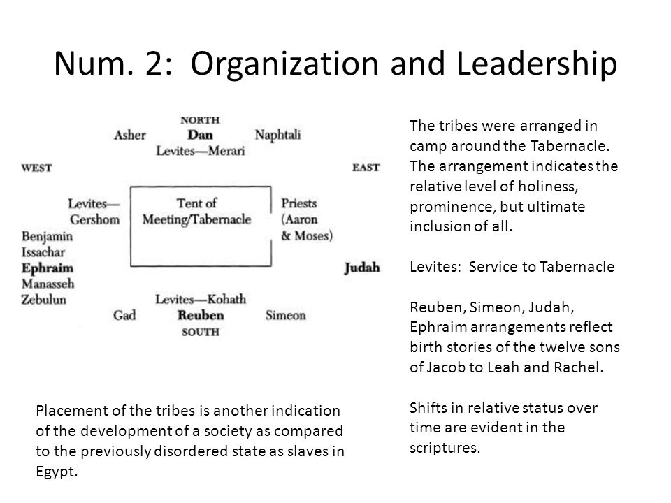 Num. 2: Organization and Leadership