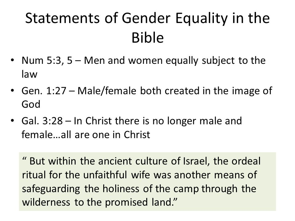 Statements of Gender Equality in the Bible