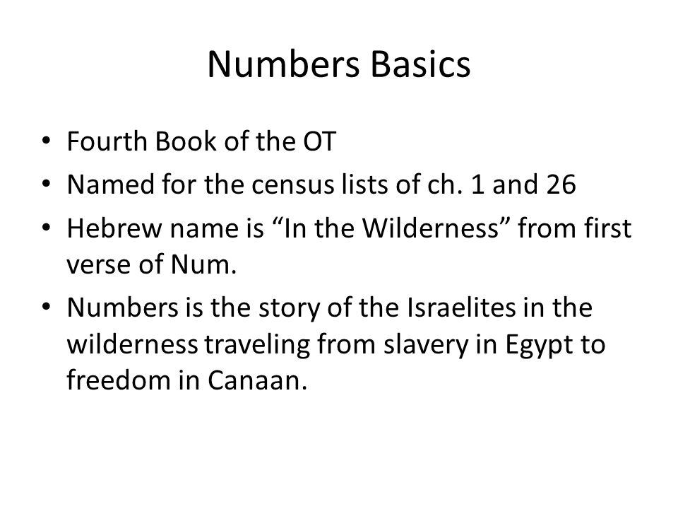 Numbers Basics Fourth Book of the OT