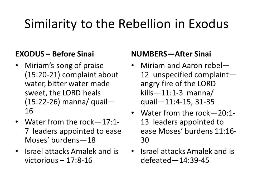 Similarity to the Rebellion in Exodus