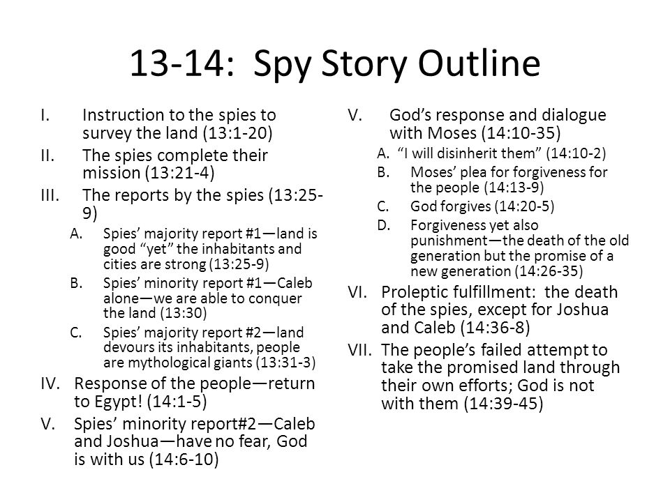 13-14: Spy Story Outline Instruction to the spies to survey the land (13:1-20) The spies complete their mission (13:21-4)