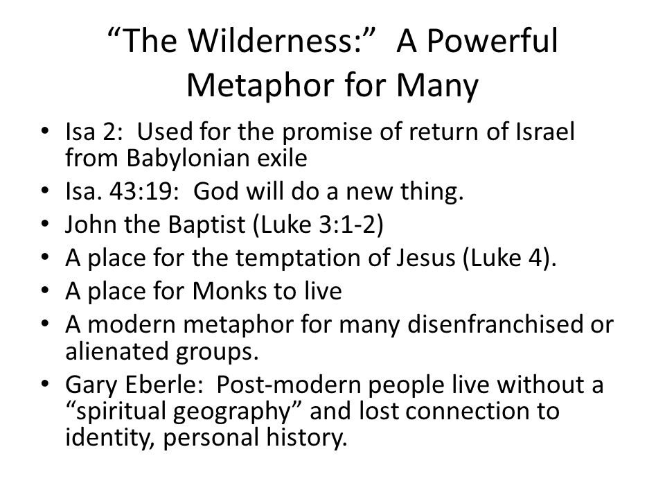 The Wilderness: A Powerful Metaphor for Many