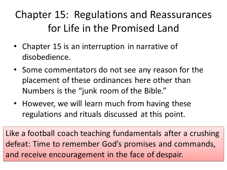 Chapter 15: Regulations and Reassurances for Life in the Promised Land