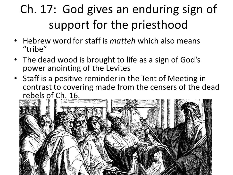 Ch. 17: God gives an enduring sign of support for the priesthood