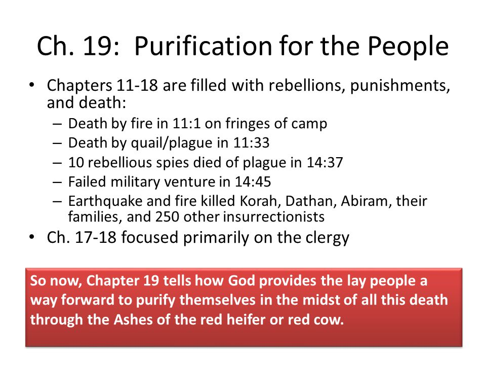 Ch. 19: Purification for the People
