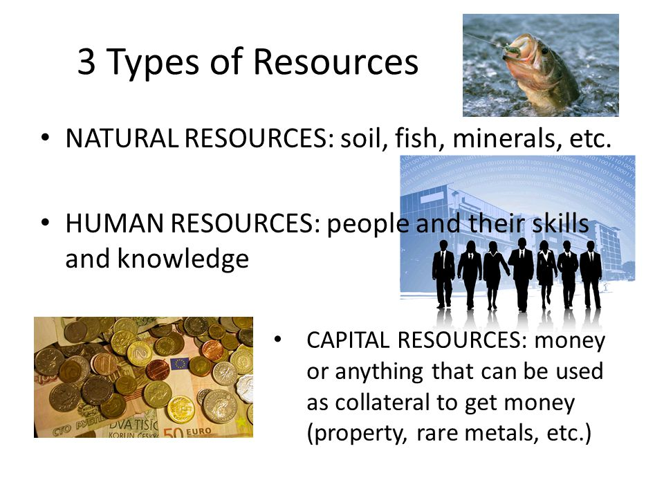 3 Types of Resources NATURAL RESOURCES: soil, fish, minerals, etc.