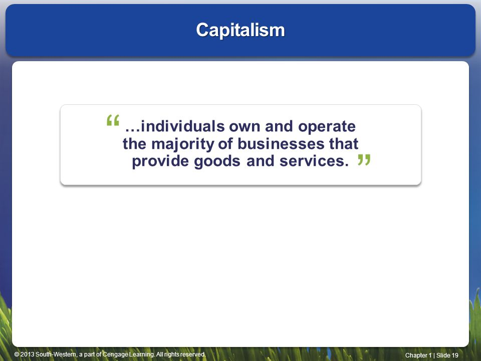 Capitalism …individuals own and operate the majority of businesses that provide goods and services.