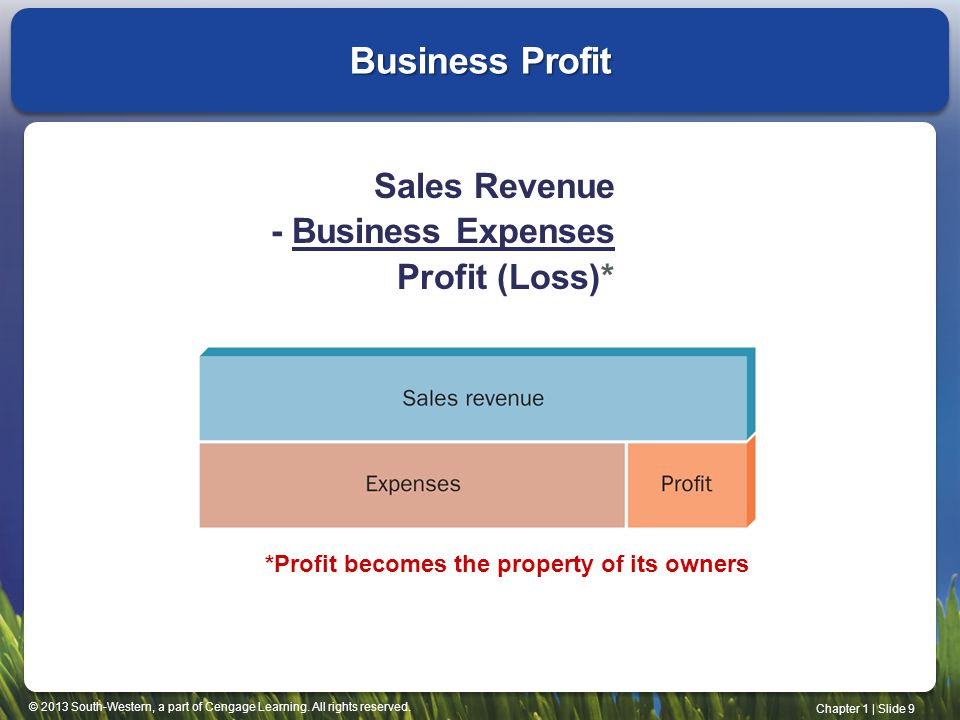 Business Profit Sales Revenue - Business Expenses Profit (Loss)*