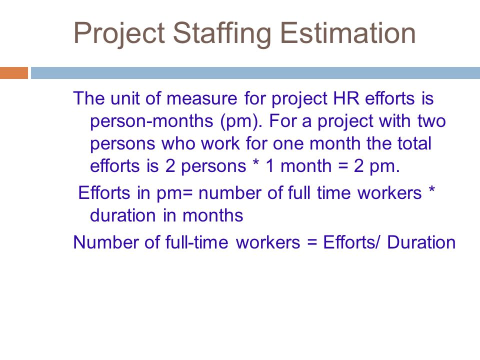Project Staffing Estimation