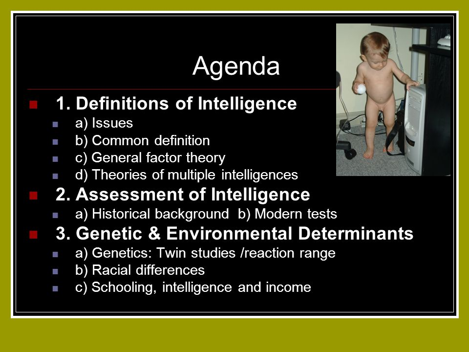 Agenda 1. Definitions of Intelligence 2. Assessment of Intelligence
