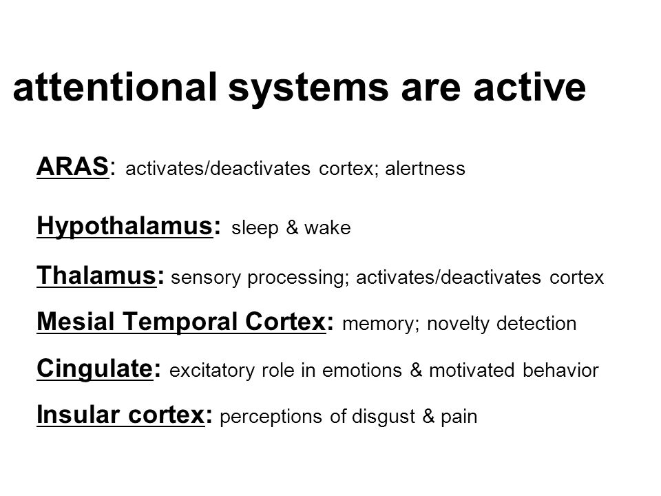 attentional systems are active