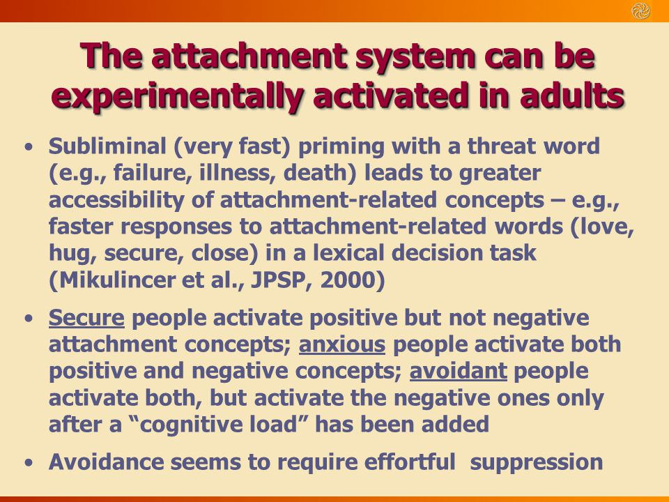 The attachment system can be experimentally activated in adults
