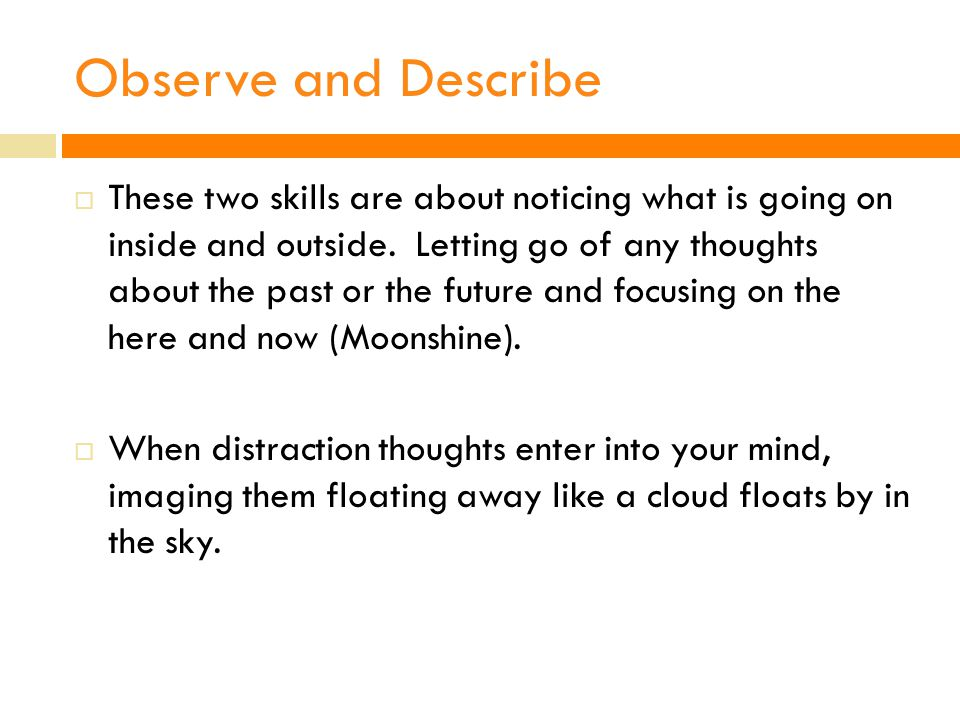 Observe and Describe