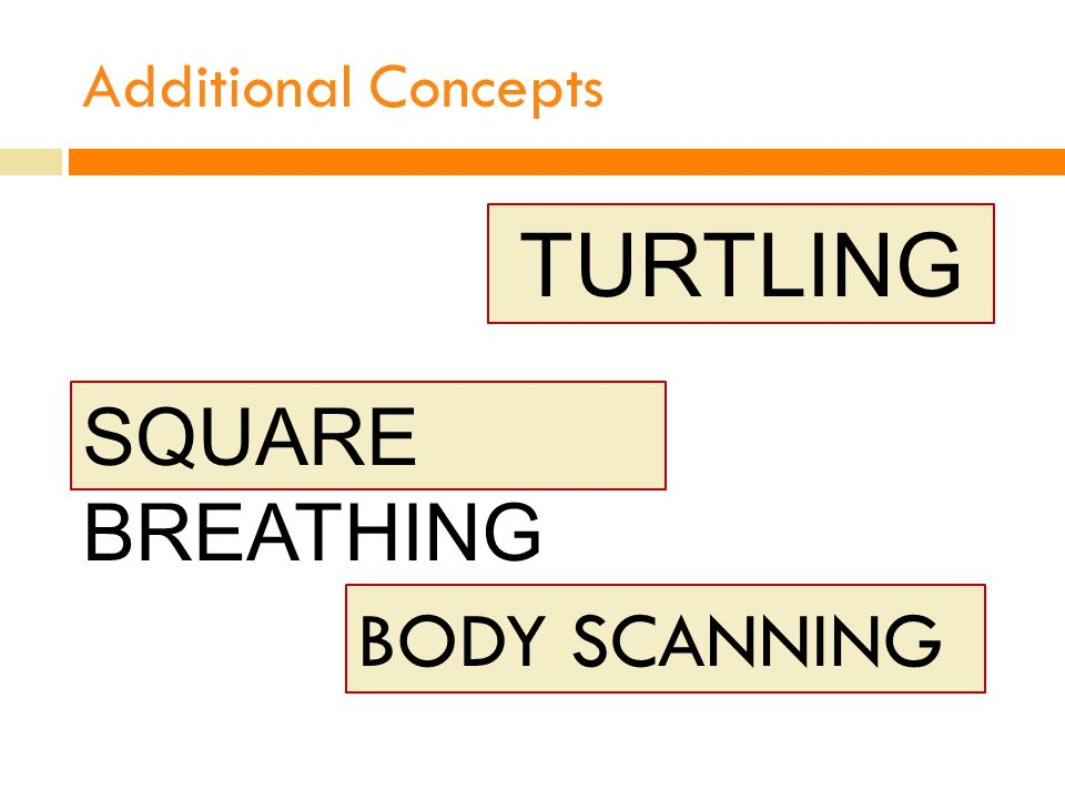 Additional Concepts TURTLING SQUARE BREATHING BODY SCANNING