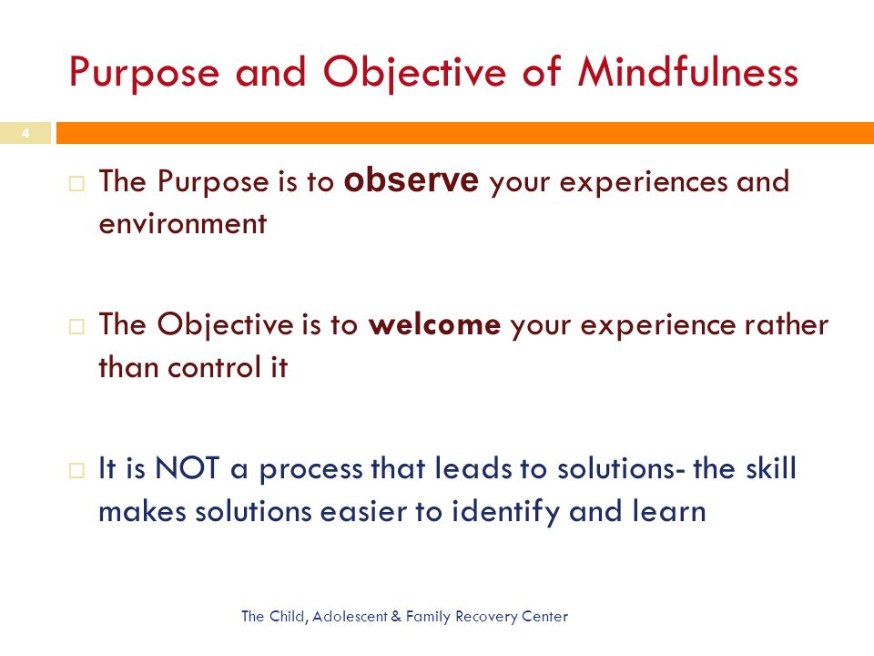 Purpose and Objective of Mindfulness