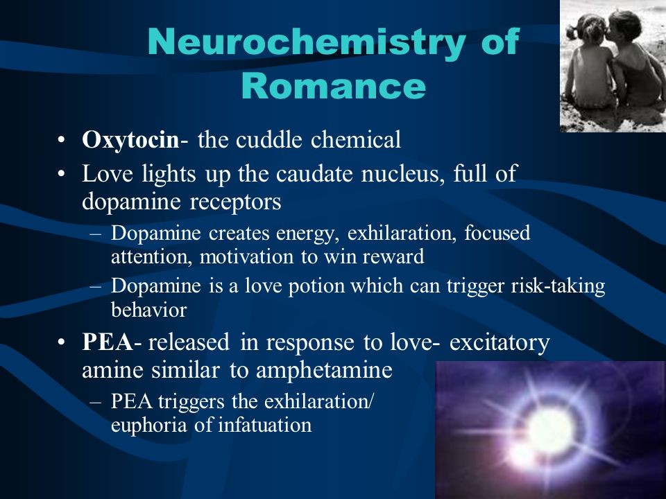 Neurochemistry of Romance