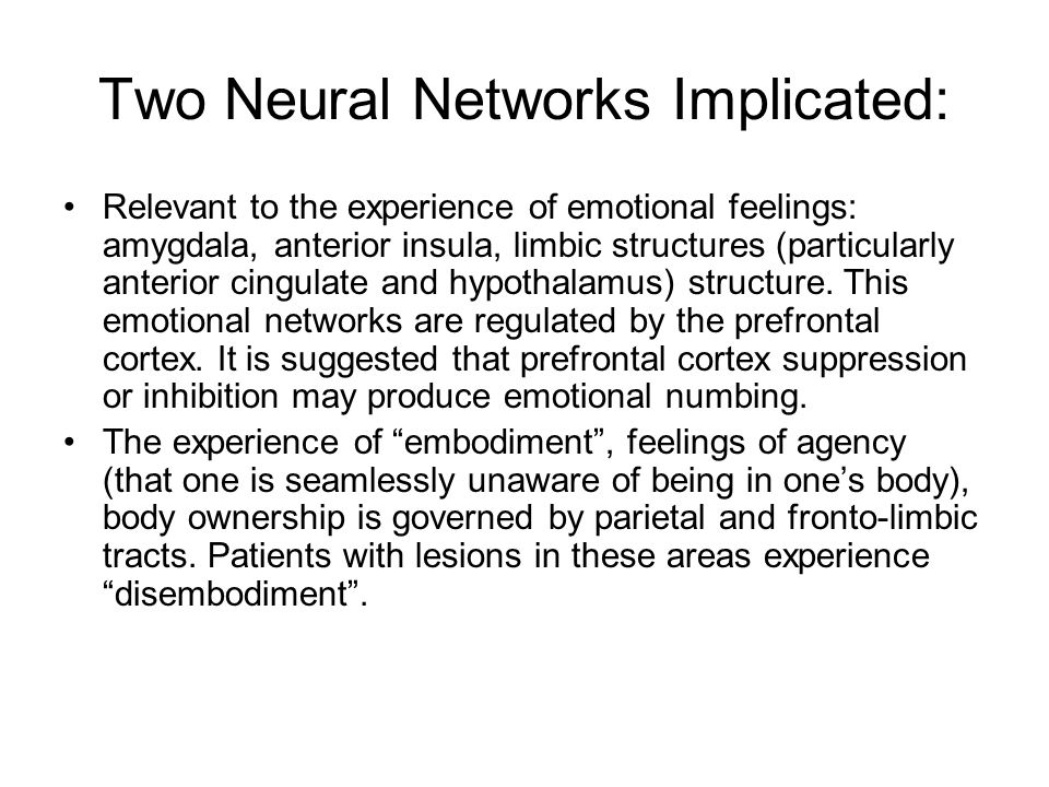 Two Neural Networks Implicated: