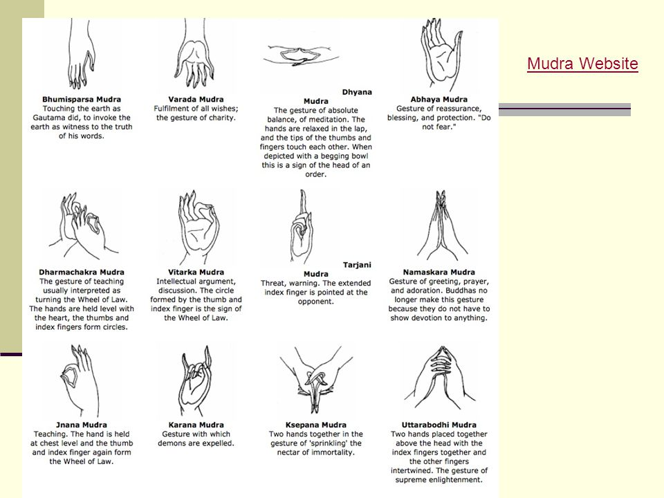 Mudra Website