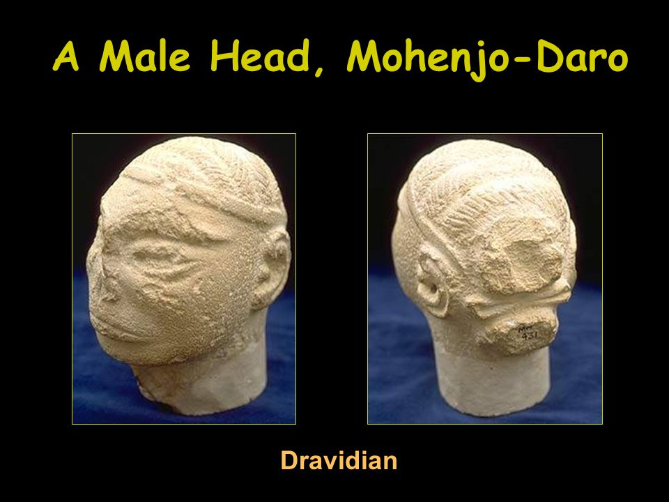 A Male Head, Mohenjo-Daro