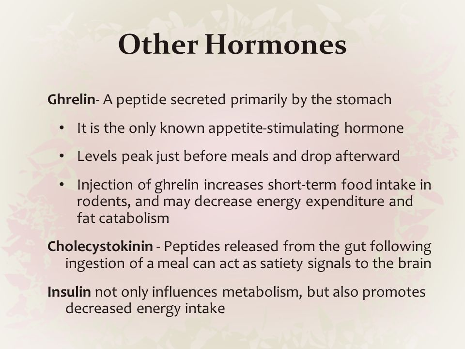 Other Hormones Ghrelin- A peptide secreted primarily by the stomach