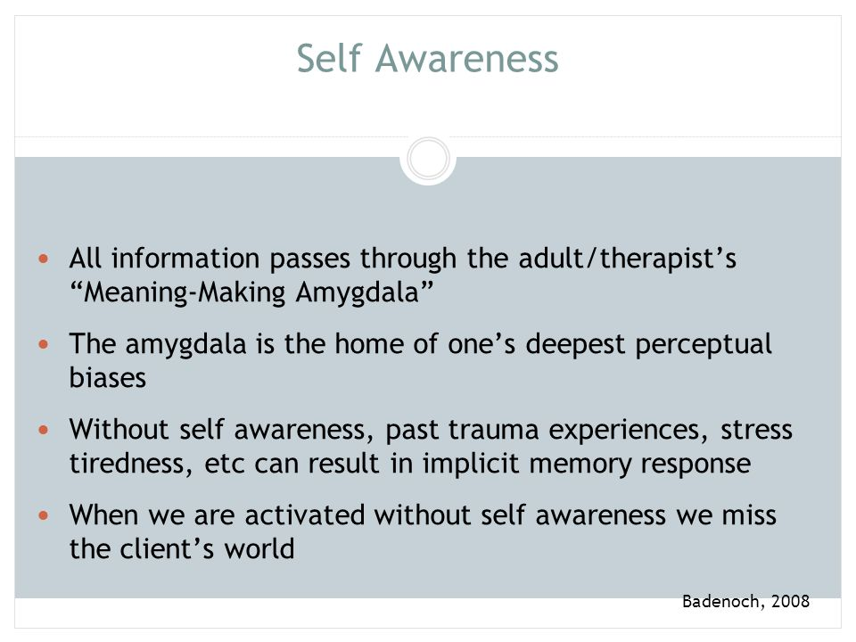 Self Awareness All information passes through the adult/therapist's Meaning-Making Amygdala