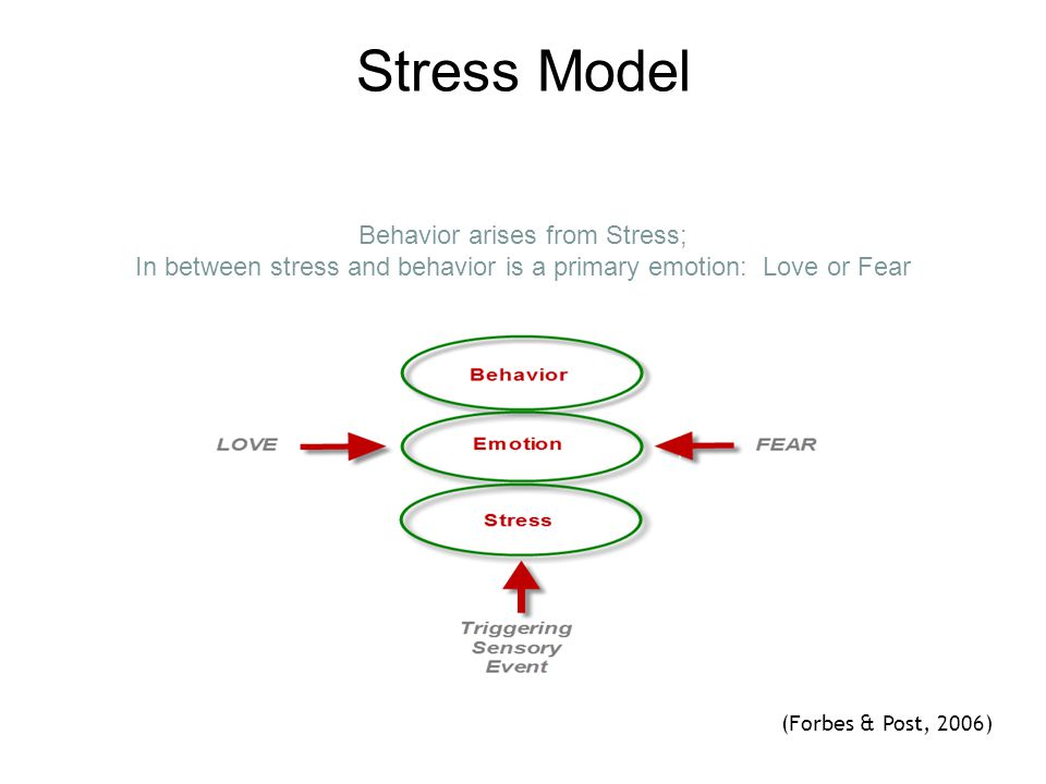 Stress Model Behavior arises from Stress; In between stress and behavior is a primary emotion: Love or Fear.