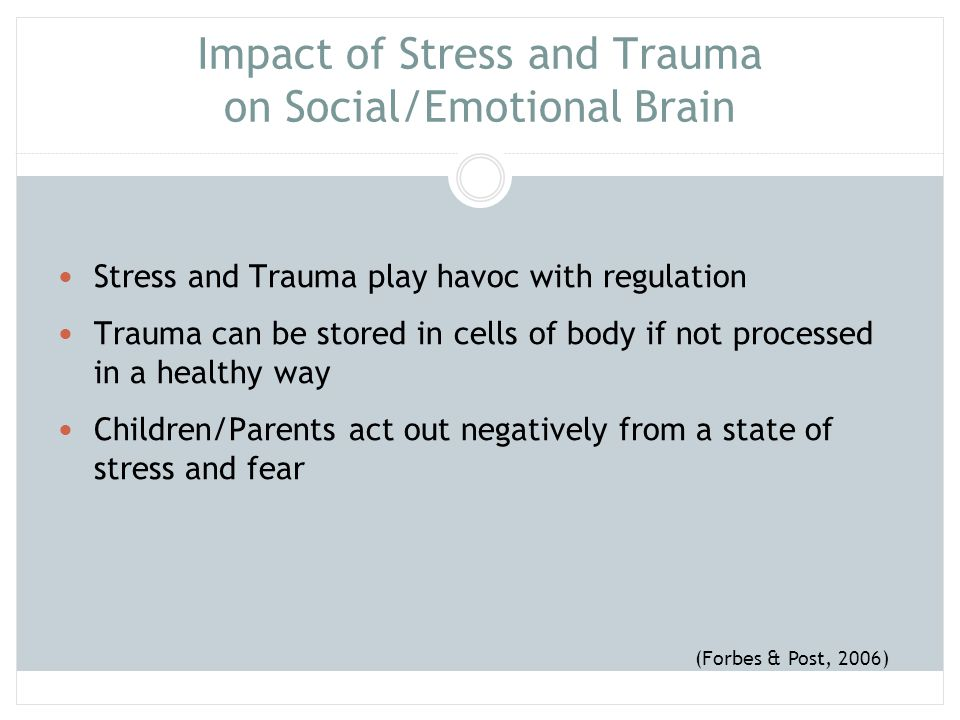 Impact of Stress and Trauma on Social/Emotional Brain