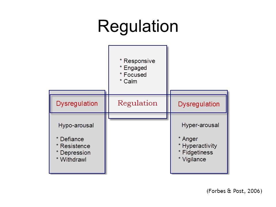 Regulation See page 19 diagram (Forbes & Post, 2006) 48