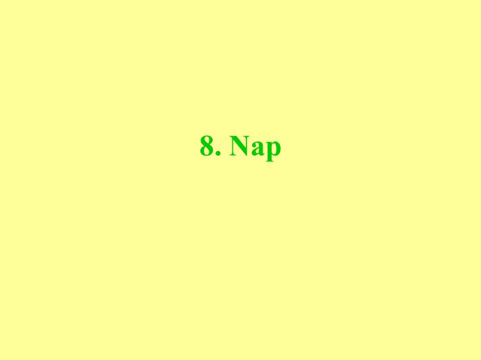 8. Nap