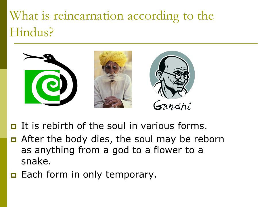 What is reincarnation according to the Hindus