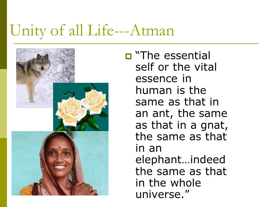 Unity of all Life---Atman
